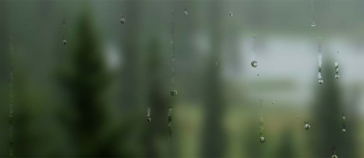rain-theme-01